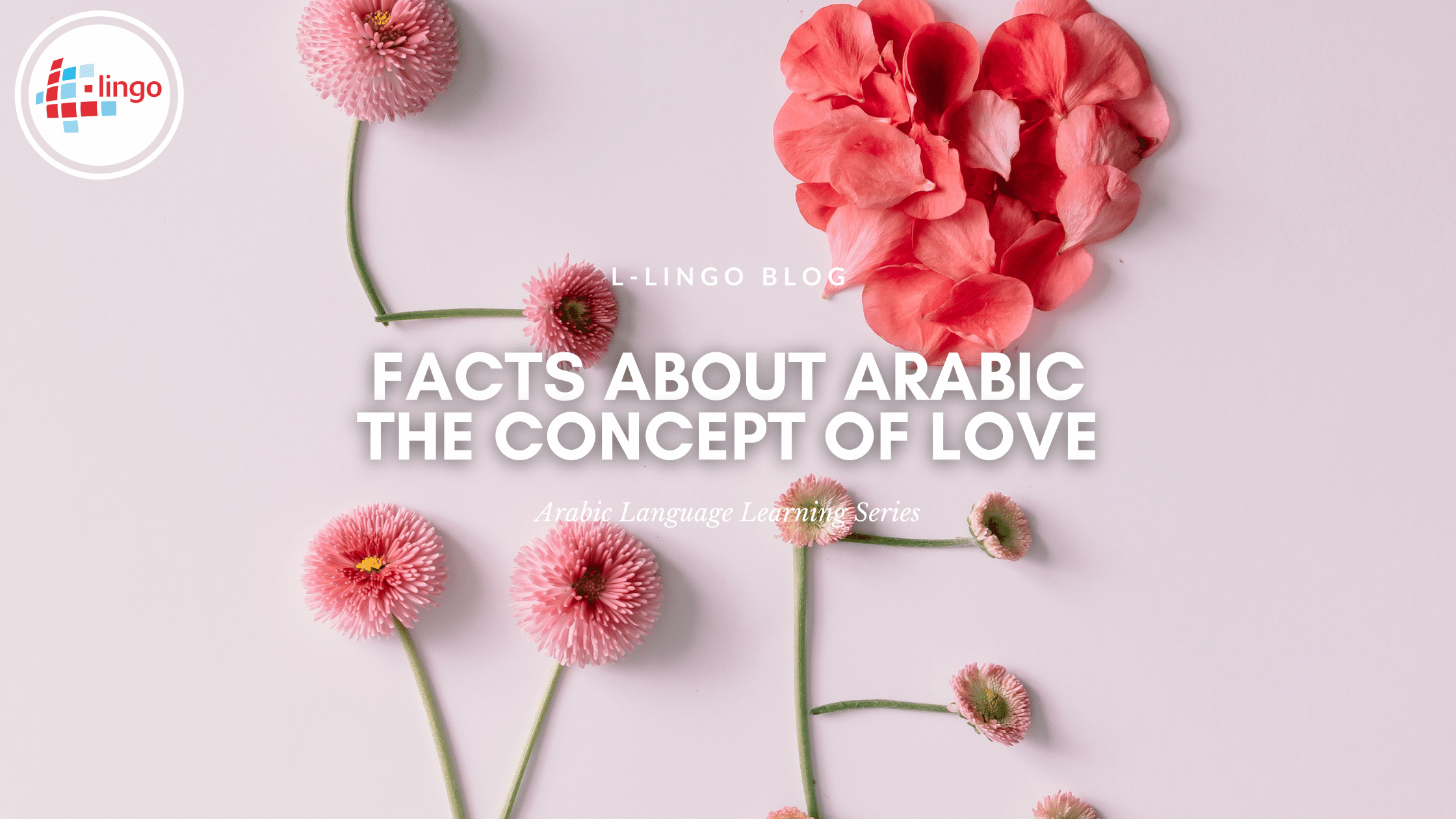 Facts About Arabic The Concept Of Love L-Lingo Blog